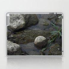 A River Runs Through It Laptop & iPad Skin