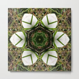 Kaleidoscope of puffball fungus Metal Print