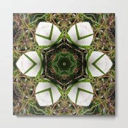 Kaleidoscope of puffball fungus Metal Print
