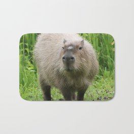 So cute capybara Bath Mat