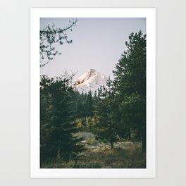 Mount Hood XIV Art Print