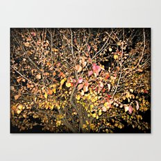 Change In The Night Canvas Print