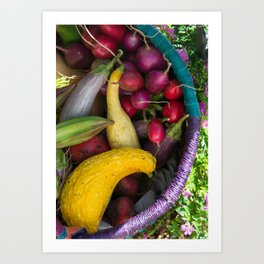 CSA Fall Harvest Art Print