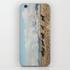 Running Reservation Horses iPhone & iPod Skin