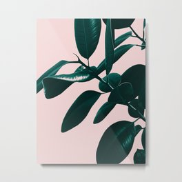 Ficus Elastica Blush Green Vibes #1 #foliage #decor #art #society6 Metal Print