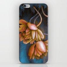 Anemone Flowers iPhone & iPod Skin