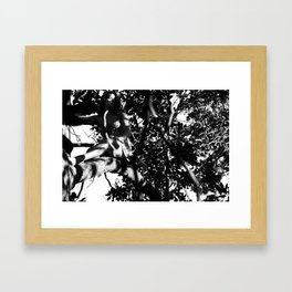 Jane Framed Art Print