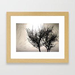 spooj Framed Art Print