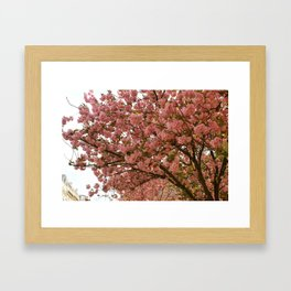 PARIS IN MARCH Framed Art Print