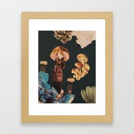 Psalliota silvatica Framed Art Print