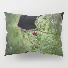 Beyond the void Pillow Sham
