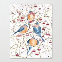 Watercolor print birds Canvas Print