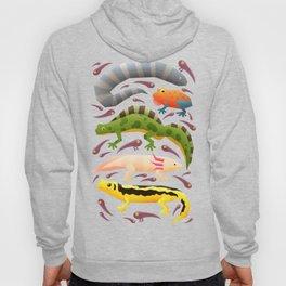 Amphibians Hoody