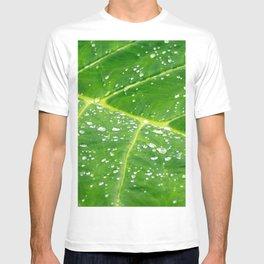 Morning Dew T-shirt