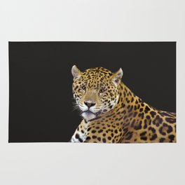Jaguar At Rest - Big Cat Art Rug