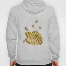BEES and Honeycomb Hoody