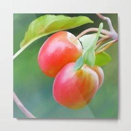 Wild apples, watercolors Metal Print
