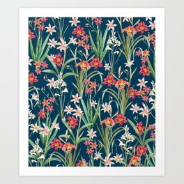 Blossom Botanical Art Print