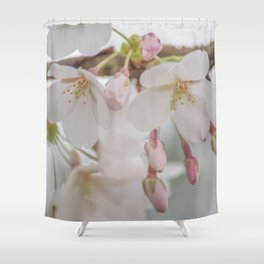Delicate Blush Shower Curtain