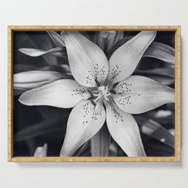 Black and White Lily Flower Photography, Grey Floral Art, Lillies Photo, Grey Lilly Nature Print Serving Tray