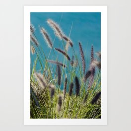 Thin herbs Art Print