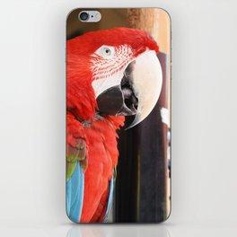 Margaritaville Parrot iPhone Skin