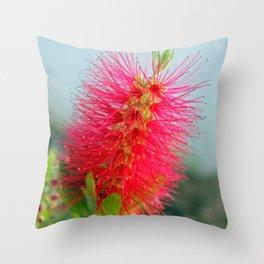 brush Throw Pillow