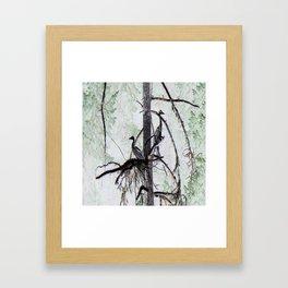 Watchtower Herons.... Framed Art Print
