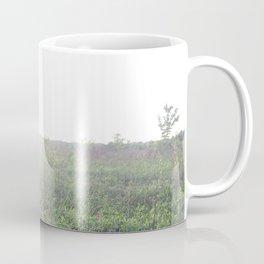 Sun soaked Coffee Mug