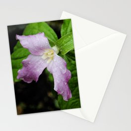 Pink Trillium in Early Spring, Fine Art Print, Botanical Art, Pink Flowers Stationery Cards