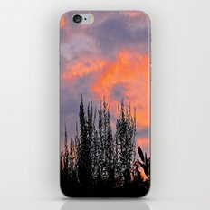 Sunset Silhouettes iPhone & iPod Skin