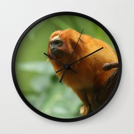 Orange Monkey Photography Print Wall Clock