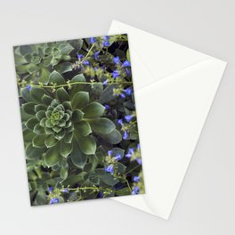 Succulent Smitten Stationery Cards