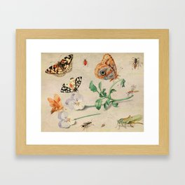 """Jan van Kessel de Oude """"Study of insects and flowers"""" Framed Art Print"""
