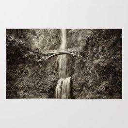 Waterfalls-B&W-Sepia Rug