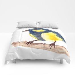 Blue Pinzon Comforters