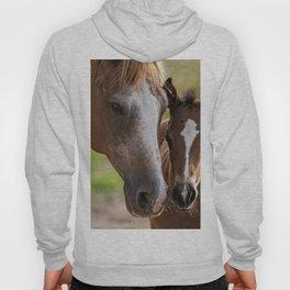 Horse Family Hoody