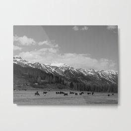 The Grand Tetons: Grazing Metal Print
