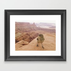 Desert Bird Framed Art Print