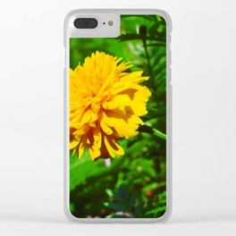 Goldquelle Coneflower Clear iPhone Case