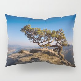 Crooked Tree in Elbe Sandstone Mountains Pillow Sham