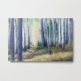 Aspen Forest Path Metal Print