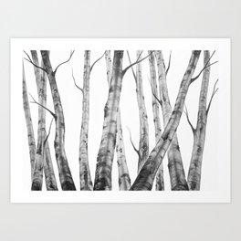 Birch Tree | Watercolour | Painting | black-and-white | Black and White | Minimalism Art Print