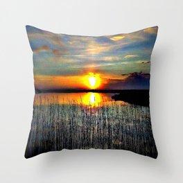Cabsink16DesignerPatternNCL Throw Pillow