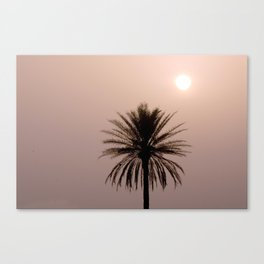 Misty Sunrise with Palm Tree Canvas Print