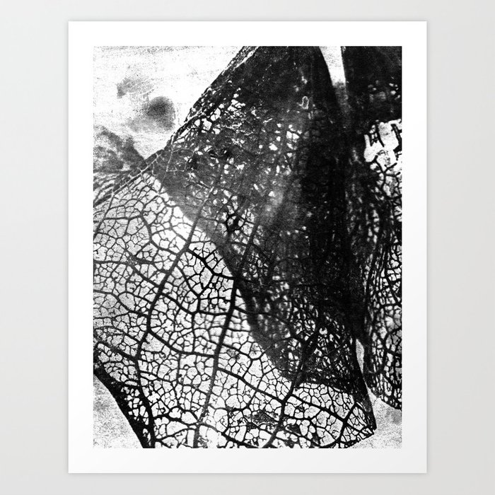 Negative Leaf Art Print