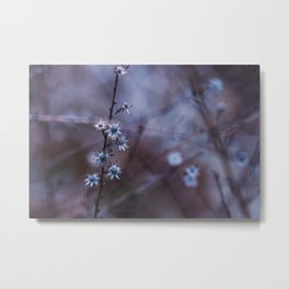 Winter Wildflowers Metal Print