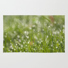 Fresh green meadow - Green grass with waterdroplets sparkling in the sun on #Society6 Rug
