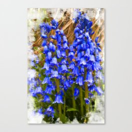 Bluebell Canvas Canvas Print