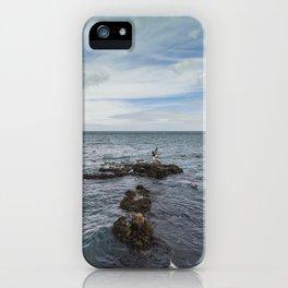Irish bay and flying seagulls iPhone Case